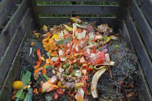 compostage dechet